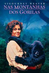 Nas Montanhas dos Gorilas