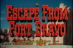 Fera do Forte Bravo